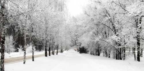 fotos do inverno