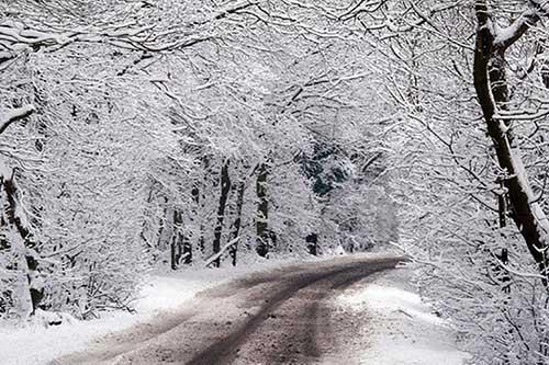 imagens do frio