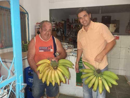 bananas imensas
